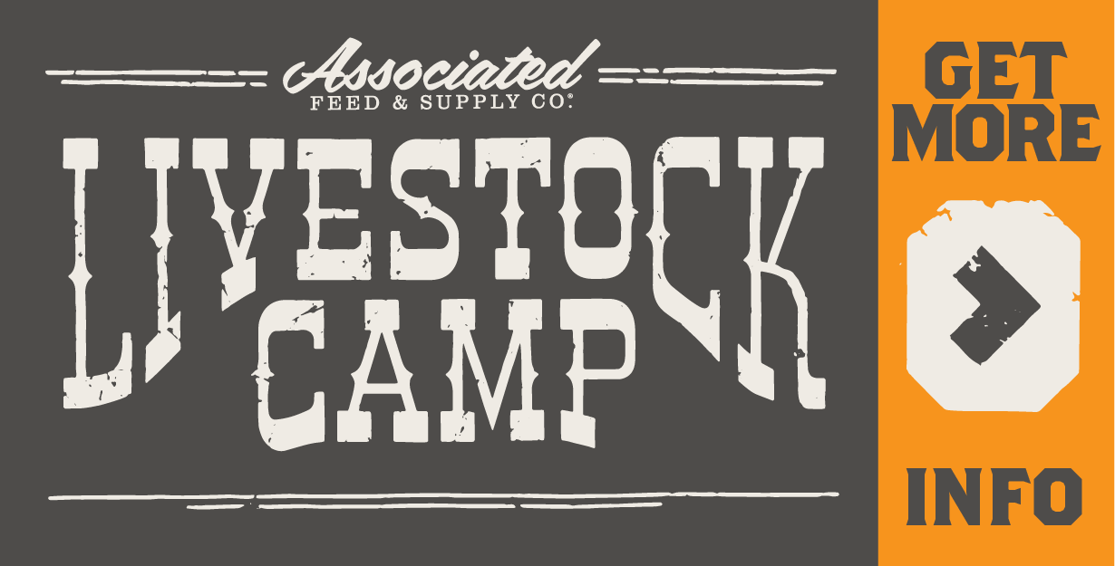 Sign up for Livestock Camp!